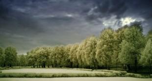 Les fonds euros des assurances vie sont-ils encore intéressants en 2013 ?